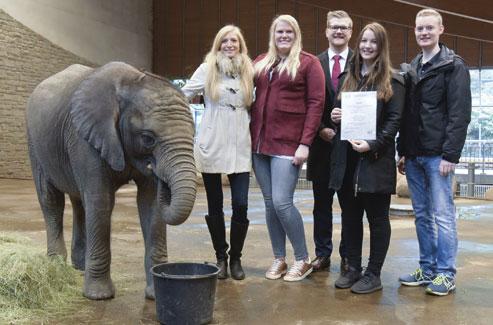 Elefanten-Paten