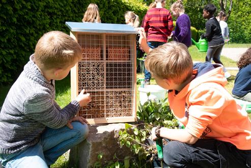Grundschüler bauen Bienenhotels