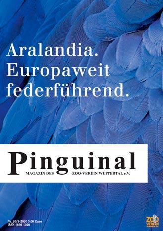 Pinguinal zu Aralandia