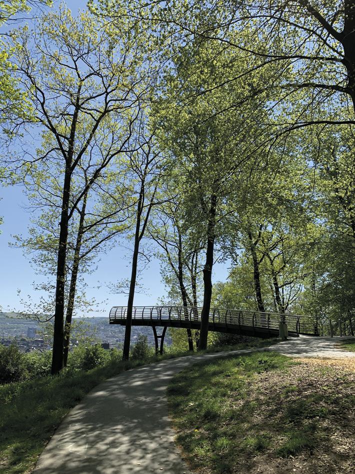 Remscheid/NRW – Waldklimakrise